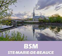 BSM_avisN