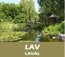LAV_avisN