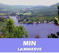 MIN_avisN
