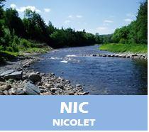 NIC_avisN